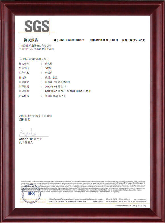 SGS Certificate Of Child Table